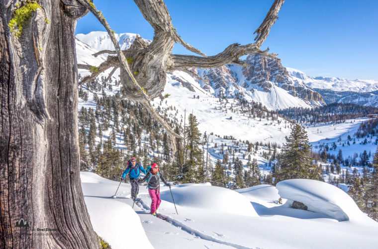 Skitour - sci d'alpinismo Hochpustertal-24