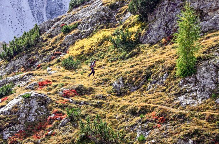 Wandern - camminate - hiking Alpinschule Drei Zinnen Tre Cime-2