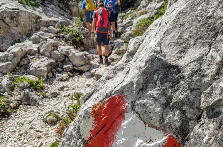 Wandern - camminate - hiking Alpinschule Drei Zinnen Tre Cime-8